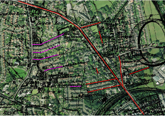Figure 3: Well preserved field boundary patterns within the Churchfields villa suburb are shown in pink and red. Red lines represent areas of former surveyed enclosure and pink represents former strip enclosure boundaries