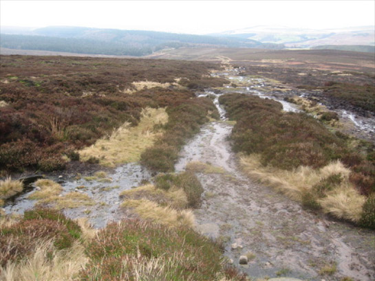Figure 1: Foulstone Moor in the 'Sheffield High Peak' Character Area